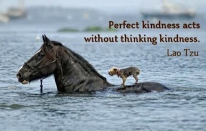 5.acts-without-thinking-kindness-picture-quotes