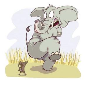 Elephant n Mouse