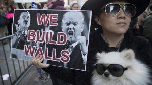 anti-trump-protests-1114